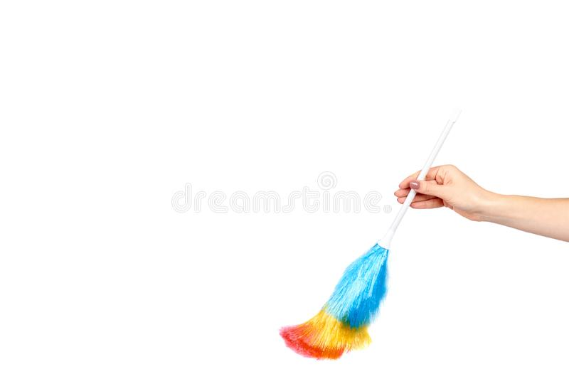 Hand with soft colorful duster, synthetic feather broom, fluffy cleaner. Isolated on white background. Copy space template, brush, domestic, homework, hygiene stock image