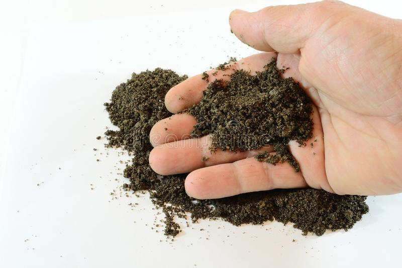 Download Hand with soil stock photo. Image of image, soil, holding - 19766080