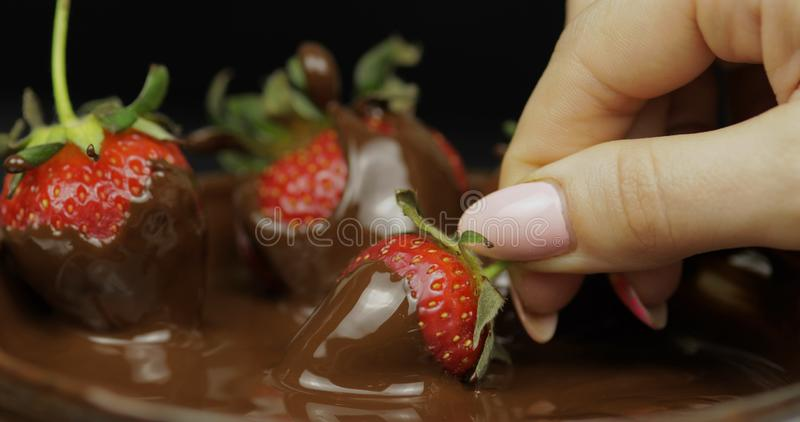 Hand som doppar jordgubben i sm?ltt choklad S?t efterr?ttmat f?r nya b?r arkivfoto