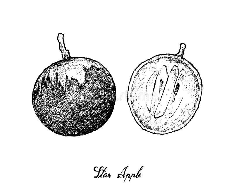 Hand som dras av stjärnan Apple på vit bakgrund royaltyfri illustrationer