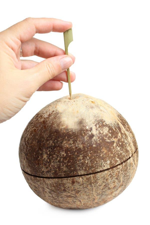 Hand som gör hålet i kokosnöt arkivfoto
