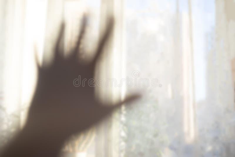 Hand som når för ljuset royaltyfria bilder