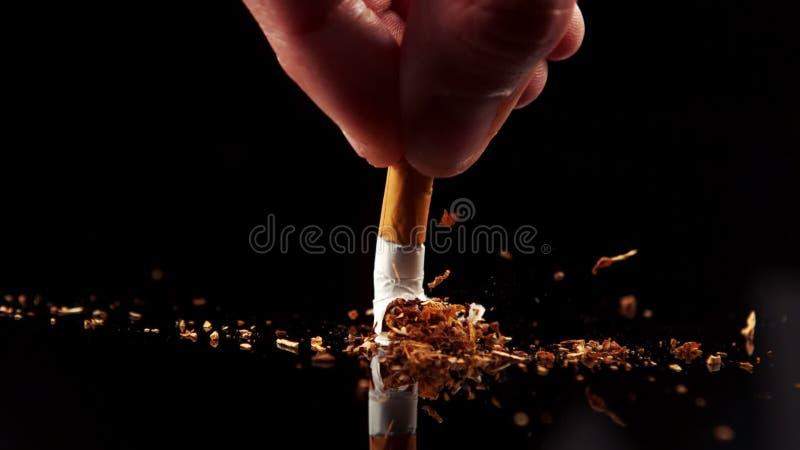 Hand som plattar till en cigarett arkivfilmer