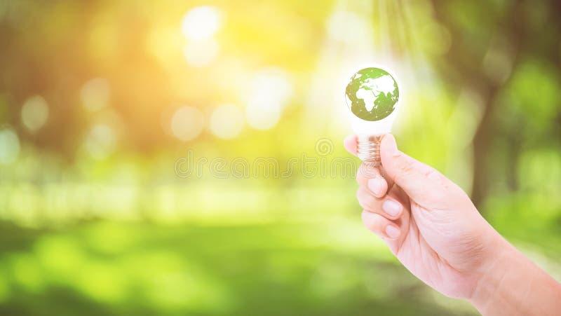Hand som rymmer en ljus kula med energigräsplanvärlden arkivbilder