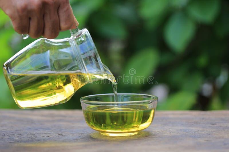 Hand som rymmer nödvändig olja eller vitamin C till flaskan på naturlig grön bakgrund, den kosmetiska pipetten och brunnsortbegre royaltyfri bild