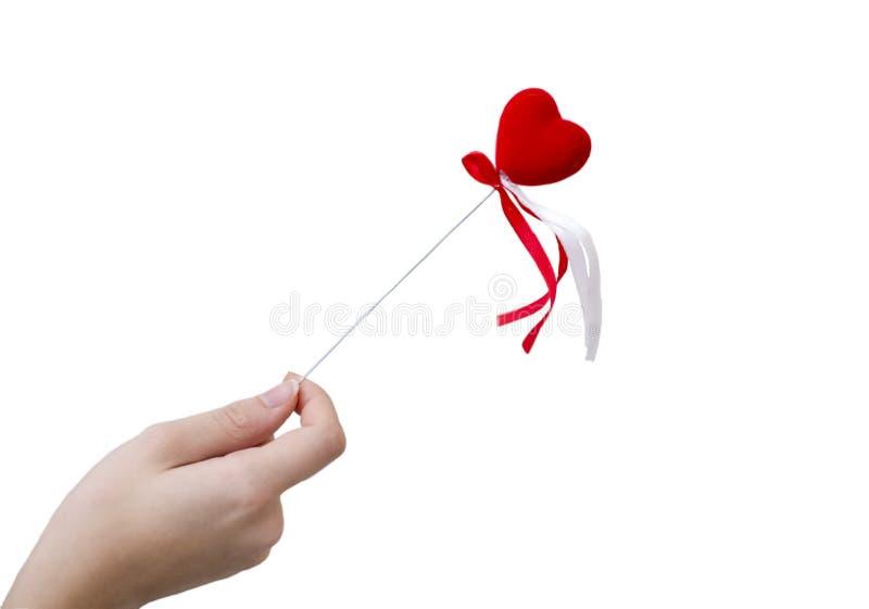 Hand som rymmer röd hjärta på vit bakgrund arkivfoton