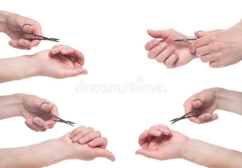Hand som rymmer sax f?r manikyr som isoleras p? vit bakgrund Befruktning f?r v?rd- och personlig omsorg ?tskilliga bilder collage arkivbilder
