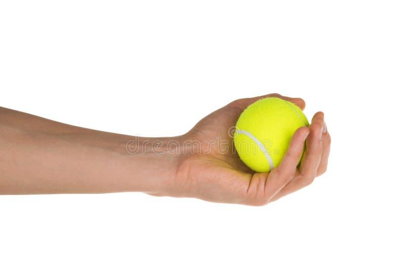 Hand som rymmer tennisbollen isolerad på den vita snabba banan royaltyfri foto