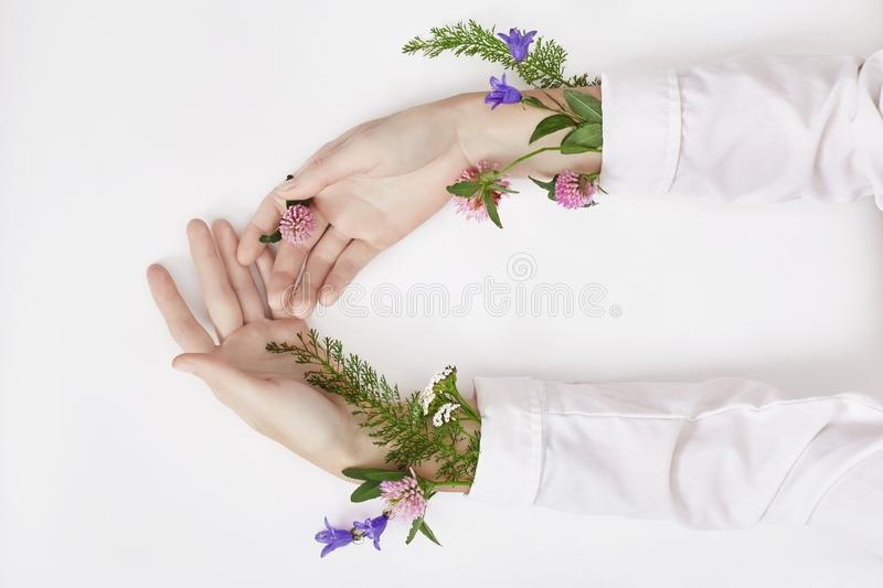 Hand and spring color flower are on table skincare. Nature Cosmetics for hand skin care, a means to reduce wrinkles on hands,. Moisturizing. Natural cosmetics stock photos