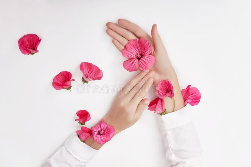 Hand and spring color flower are on table skincare. Nature Cosmetics for hand skin care, a means to reduce wrinkles on hands,. Moisturizing. Natural cosmetics stock images