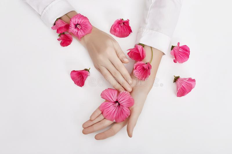 Hand and spring color flower are on table skincare. Nature Cosmetics for hand skin care, a means to reduce wrinkles on hands,. Moisturizing. Natural cosmetics royalty free stock photography