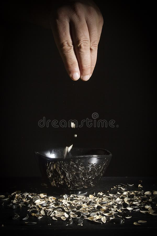 Hand with sunflower husk. Male hand with a sunflower husk on a black background royalty free stock image