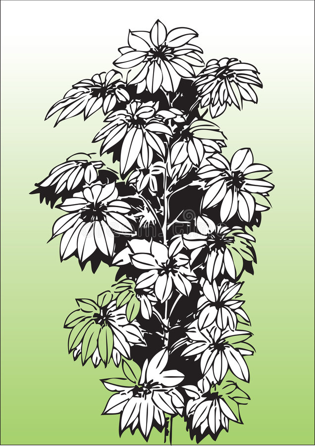 Hand tecknade tropiska blommor stock illustrationer