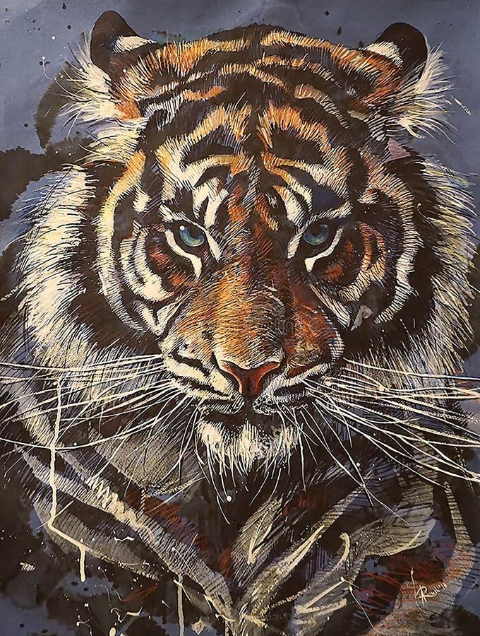 Hand-teckning stående av en tiger med blåa ögon som isoleras på blå bakgrund fotografering för bildbyråer
