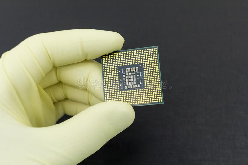 Hand in tight yellow glove holding a CPU computer processor microchip. Hand in white glove holding a CPU computer processor microchip.Background is dark grey royalty free stock images