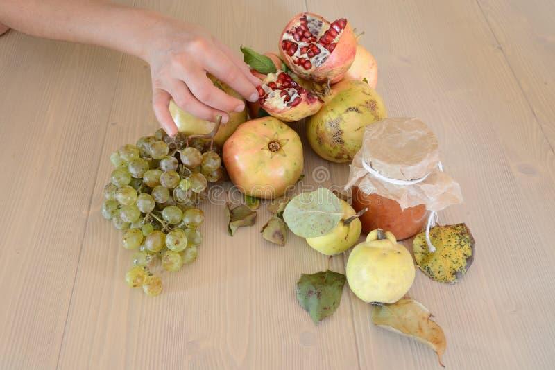 Hand touching fruit stock photos
