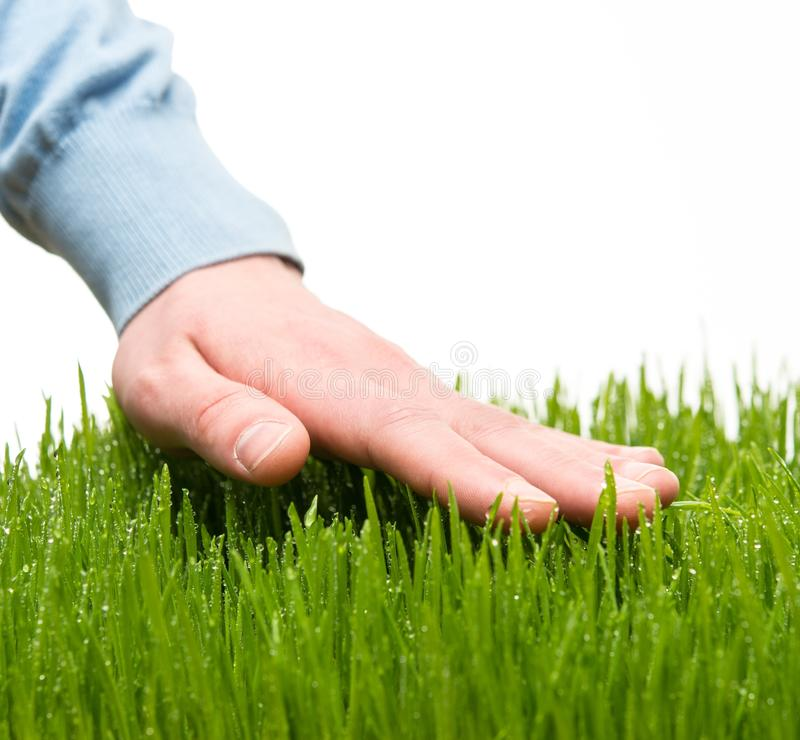 Hand touching grass stock photography