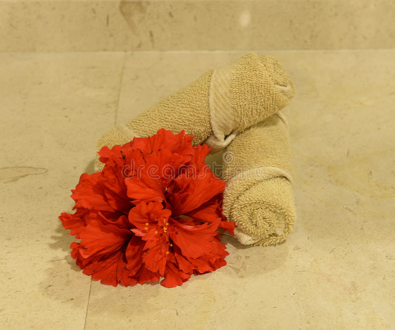 Hand towels and flowers in a spa. Rolled hand towels and red flowers in a spa, clean tiled background stock photo