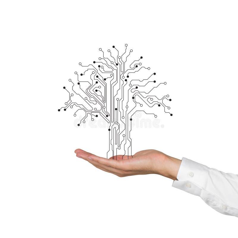 hand treen arkivfoton
