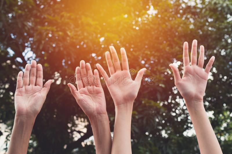 Hand up of female in garden nature and sunset background for voting,teamwork concept. stock photos