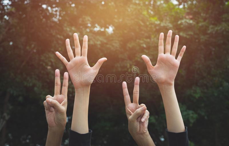 Hand up of female in garden nature and sunset background for voting,teamwork concept. royalty free stock images