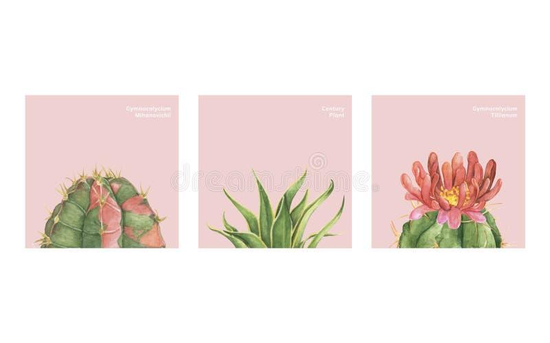 Hand van cactus wordt getrokken die en succulents stock illustratie
