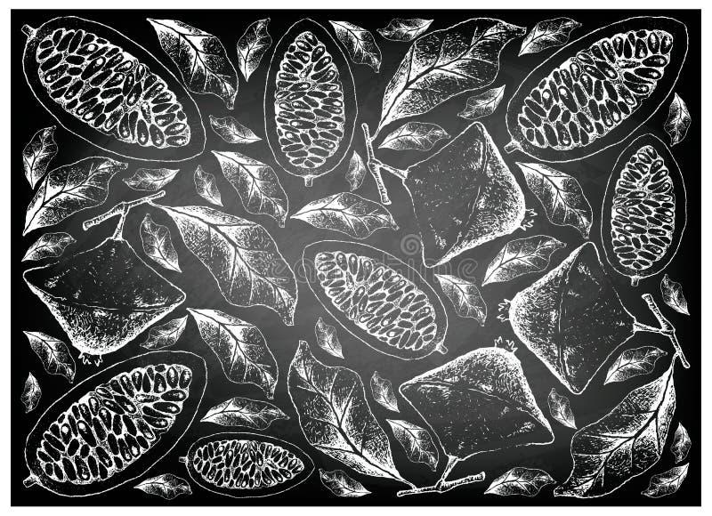 Hand van Cambuci en Banaan Passionfruit op Bord wordt getrokken dat vector illustratie