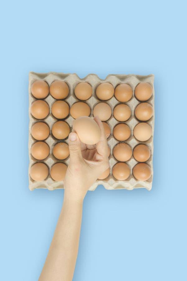Hand van de close-up houdt de jonge vrouw een vers en ruw bruin kippenei, eidoos als mooie achtergrond Organische Eieren Natuurli stock foto