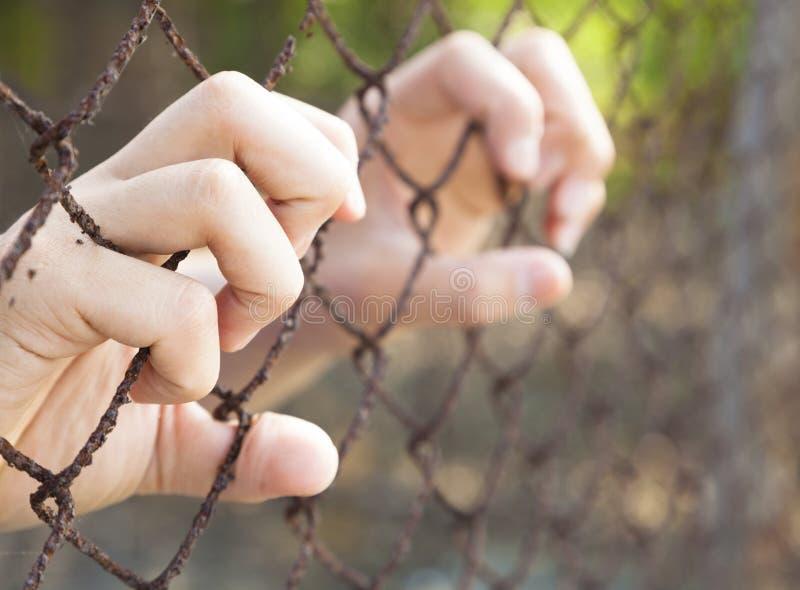 Hand van gevangenis in gevangenis royalty-vrije stock foto