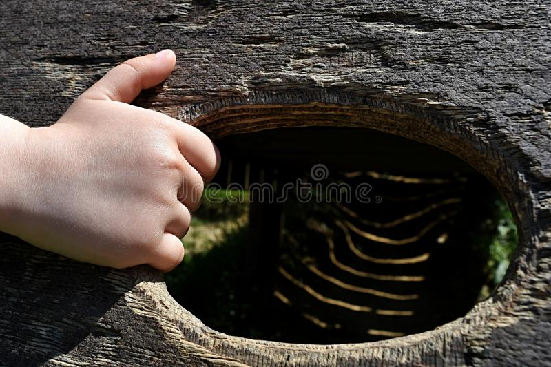 Hand van 5 jaar de oude van de jongensholding rand van houten wildernisgymnastiek royalty-vrije stock foto