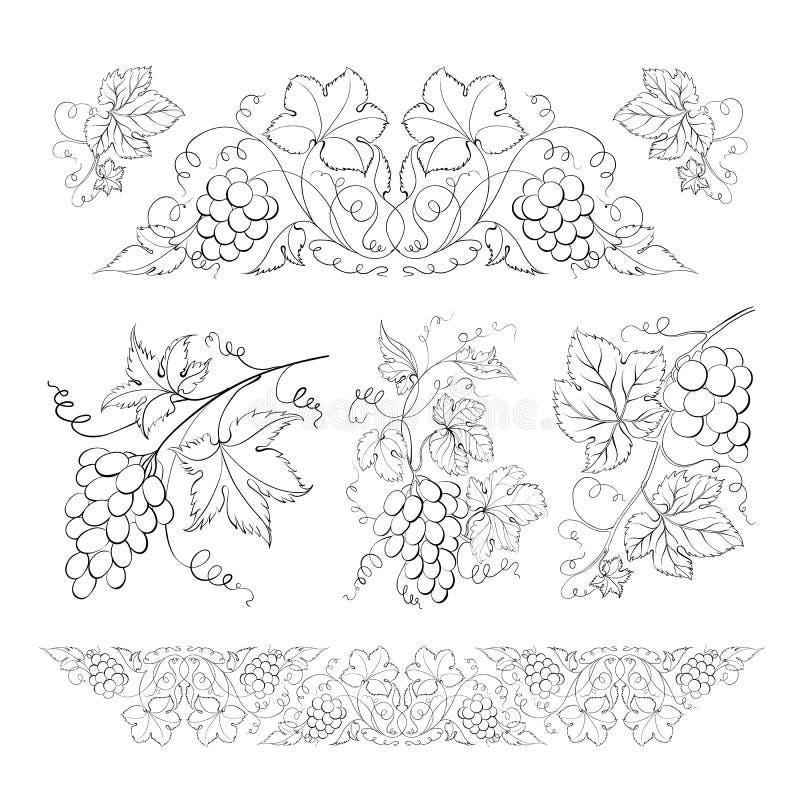 Hand van potlood, geplaatste die druiven wordt getrokken. royalty-vrije illustratie