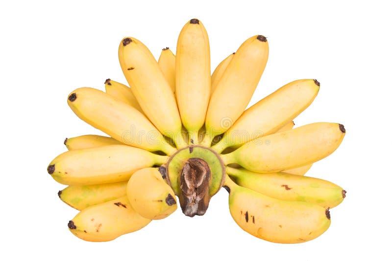 Hand von Bananen lizenzfreies stockfoto