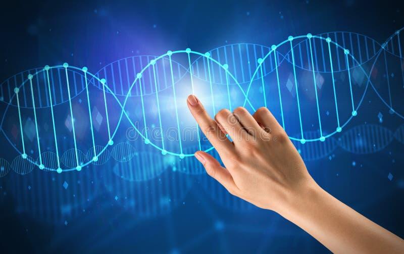 Hand wat betreft DNA-molecule royalty-vrije stock foto