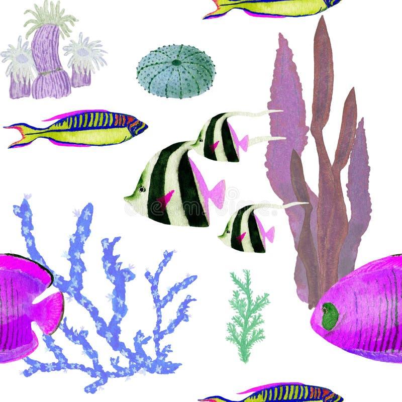 Hand in waterverf overzees wereld natuurlijk element dat wordt getrokken De vissen naadloos patroon van de koralenertsader op wit stock illustratie