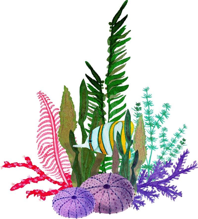 Hand in waterverf overzees wereld natuurlijk element dat wordt getrokken Samenstellingen met vissen, seaplant en koralen op witte vector illustratie