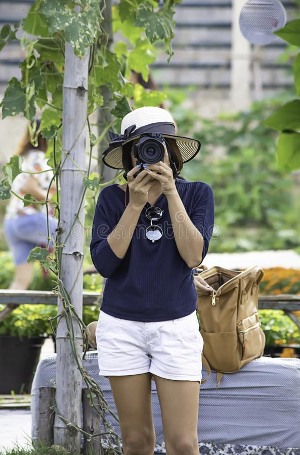 Hand woman holding the camera Taking pictures Background of trees stock image