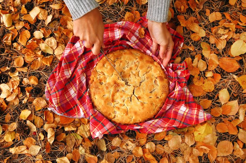 Hand of woman is slicing apple pie on the red checkered towel on a background of dry yellow autumn leaves. Hand of woman is slicing apple pie on the red royalty free stock images
