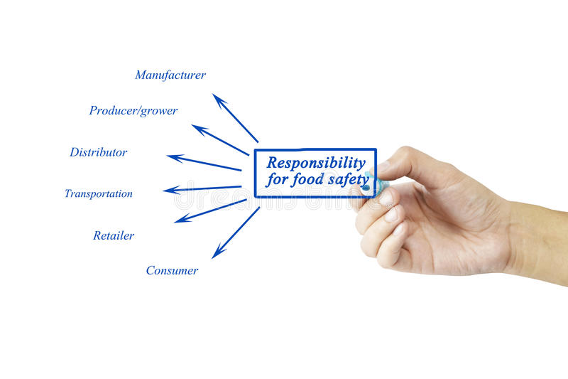 Hand writing element of Responsibility for food safety for busin. Ess concept and use in manufacture industry (Training and Presentation royalty free stock images