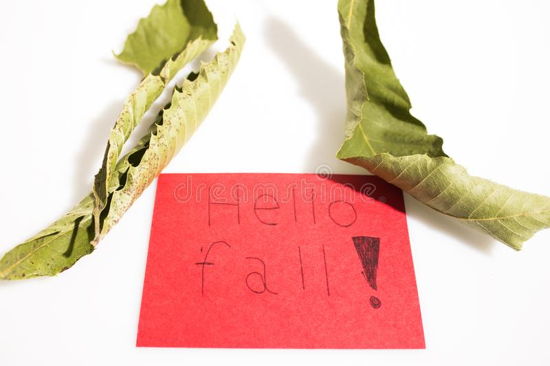 Hand wrote hello fall on a red paper with leaves isolated in a w stock photos