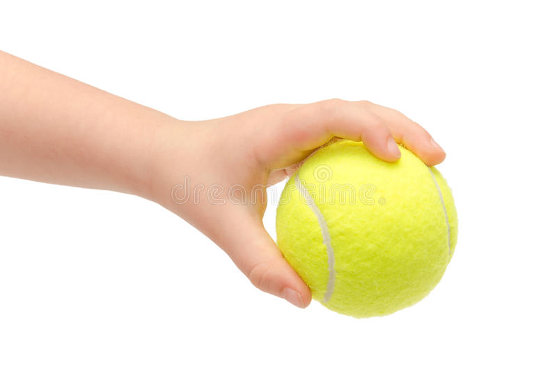 Hand of young kid holding tennis ball. royalty free stock image