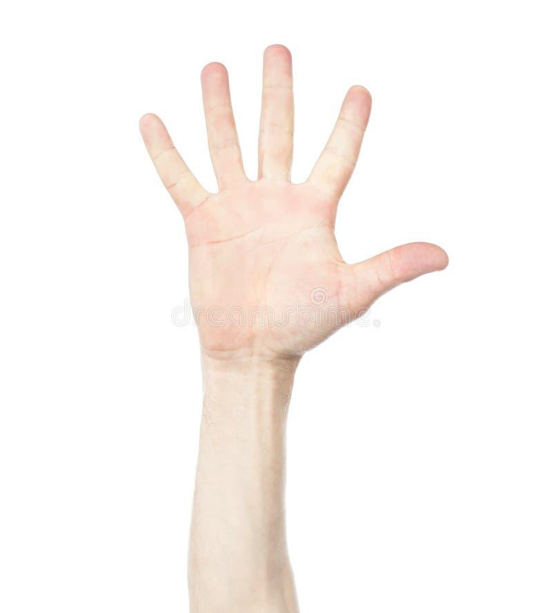 Hand zeigt die Nr. fünf lizenzfreies stockbild