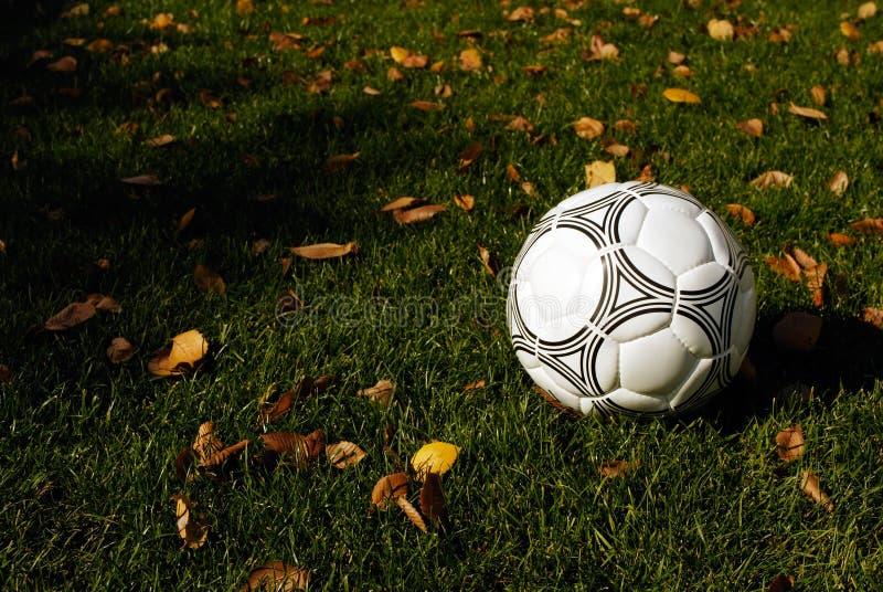 Handball stock photo