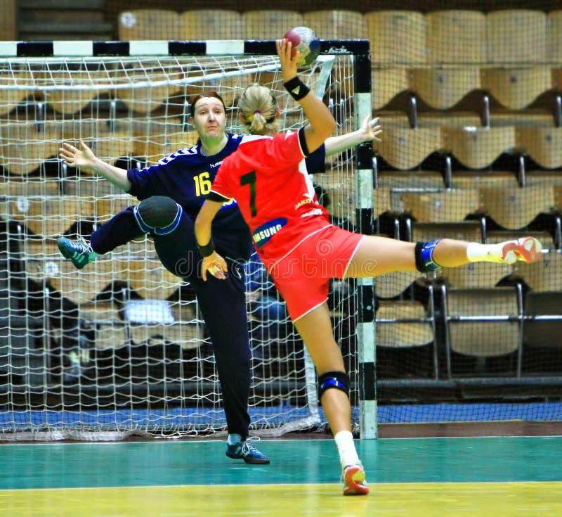 Handball lizenzfreies stockbild