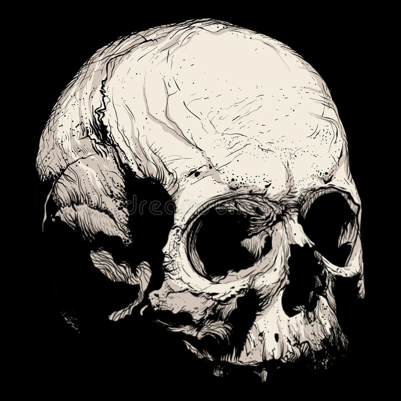 Handbravur av en mänsklig skalle royaltyfri foto