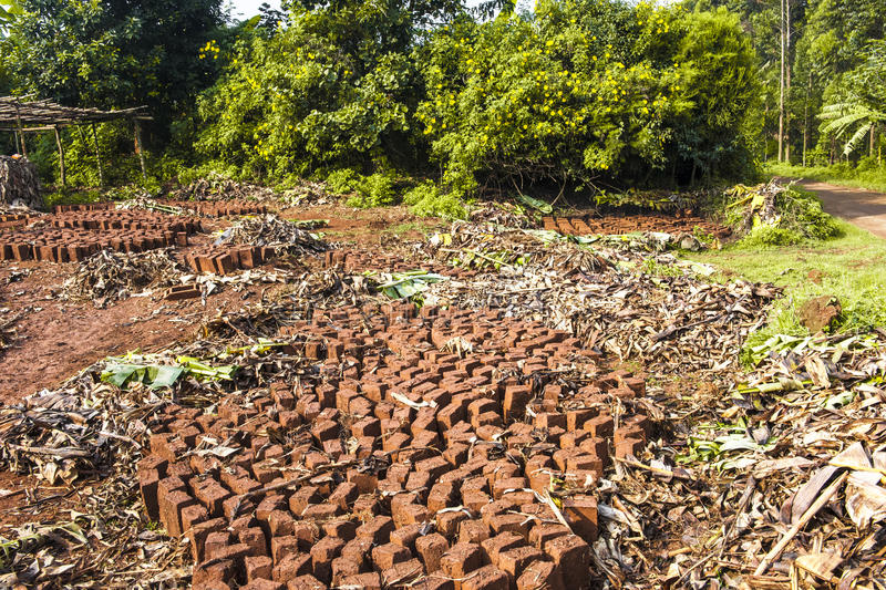 Handcrafted bricks. Bricks handmade by people in Akfrica ready for the sun drying stock photography