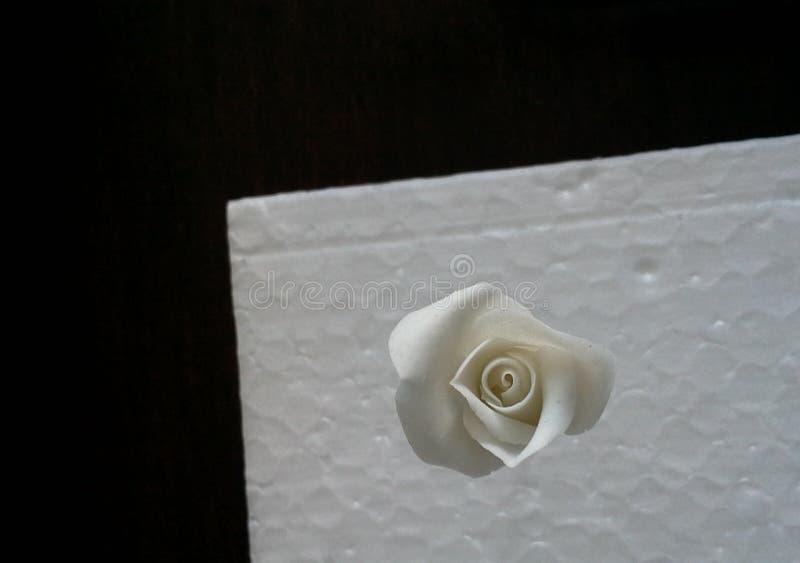 Handcraftedmicro Rose Closeup stock afbeelding