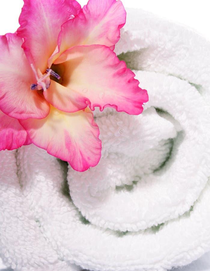 Handdoek en Gladiola royalty-vrije stock foto