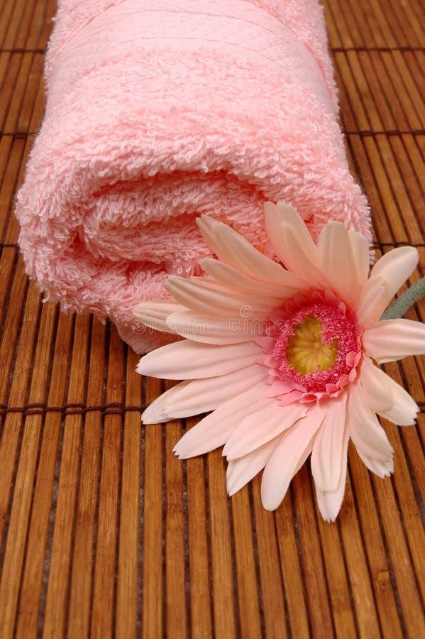 Handdoek en roze madeliefje stock foto