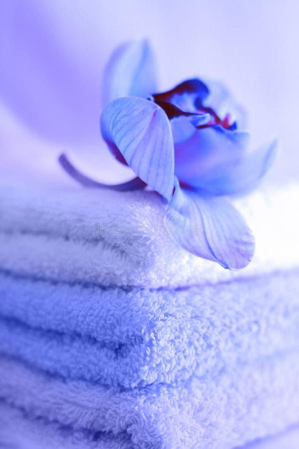 Handdoeken in blauw royalty-vrije stock fotografie