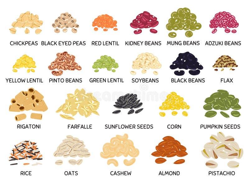 Handdragen samling av bönor, baljväxter, frön och nötter arkivfoton
